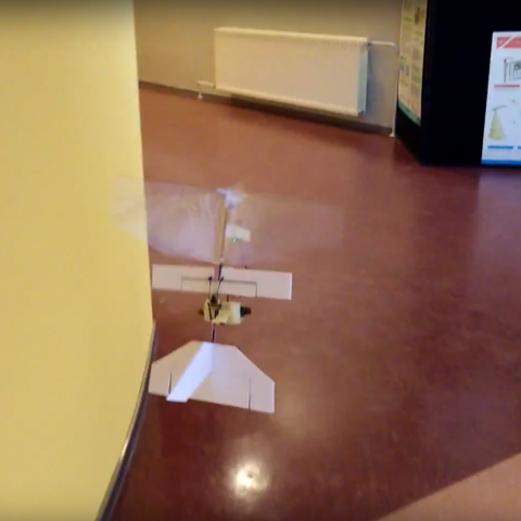 Autonomous flapping wing following a corridor