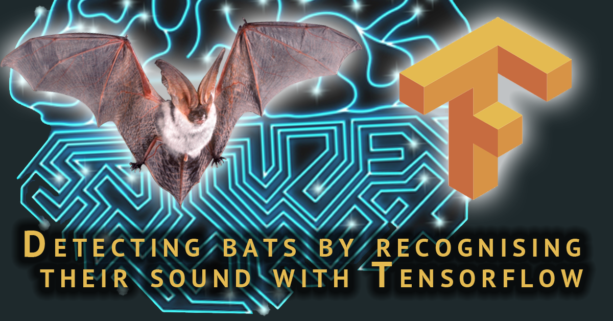 Detecting bats by recognising their sound with Tensorflow