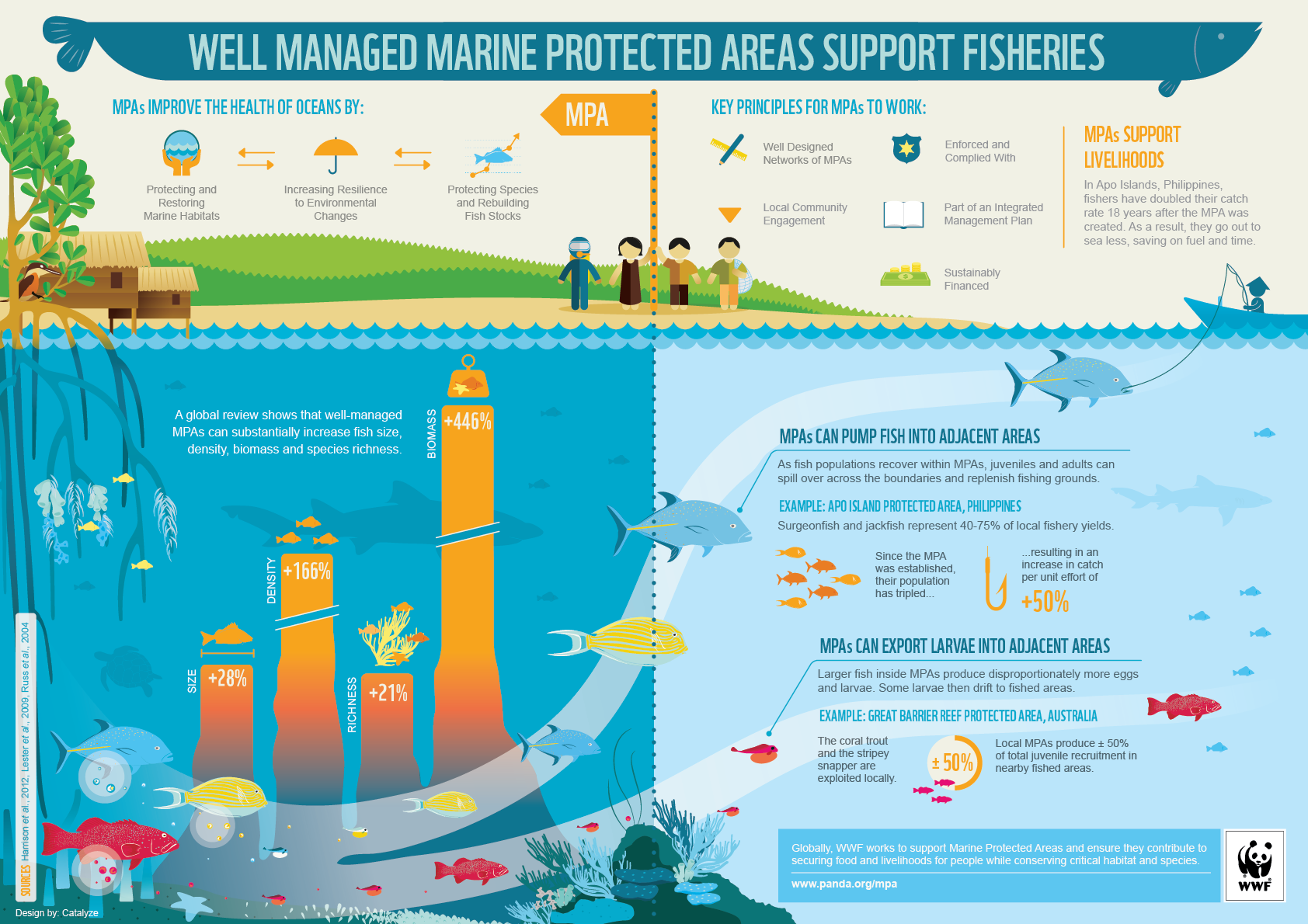 fisheries_benefits_marine_protected_areas_wwf_infographic-1