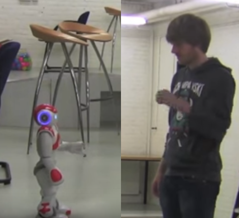 Nao Robot Karate: teaching humans karate