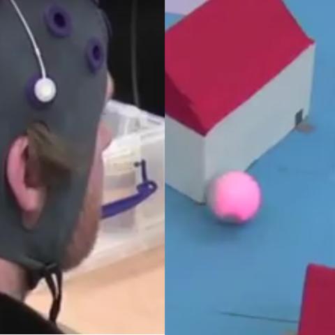 Brain golf