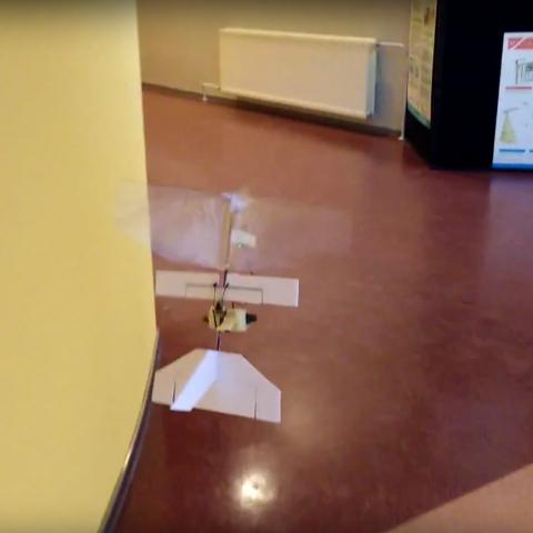 Autonomous flapping wing following a corridor